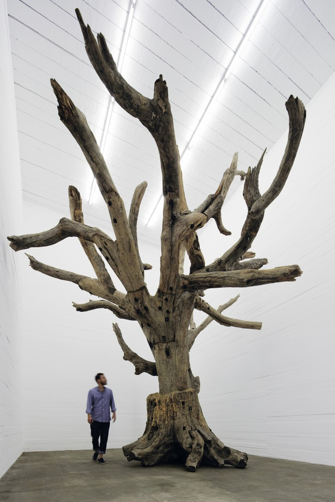 Ai Weiwei - Tree © NOSHE