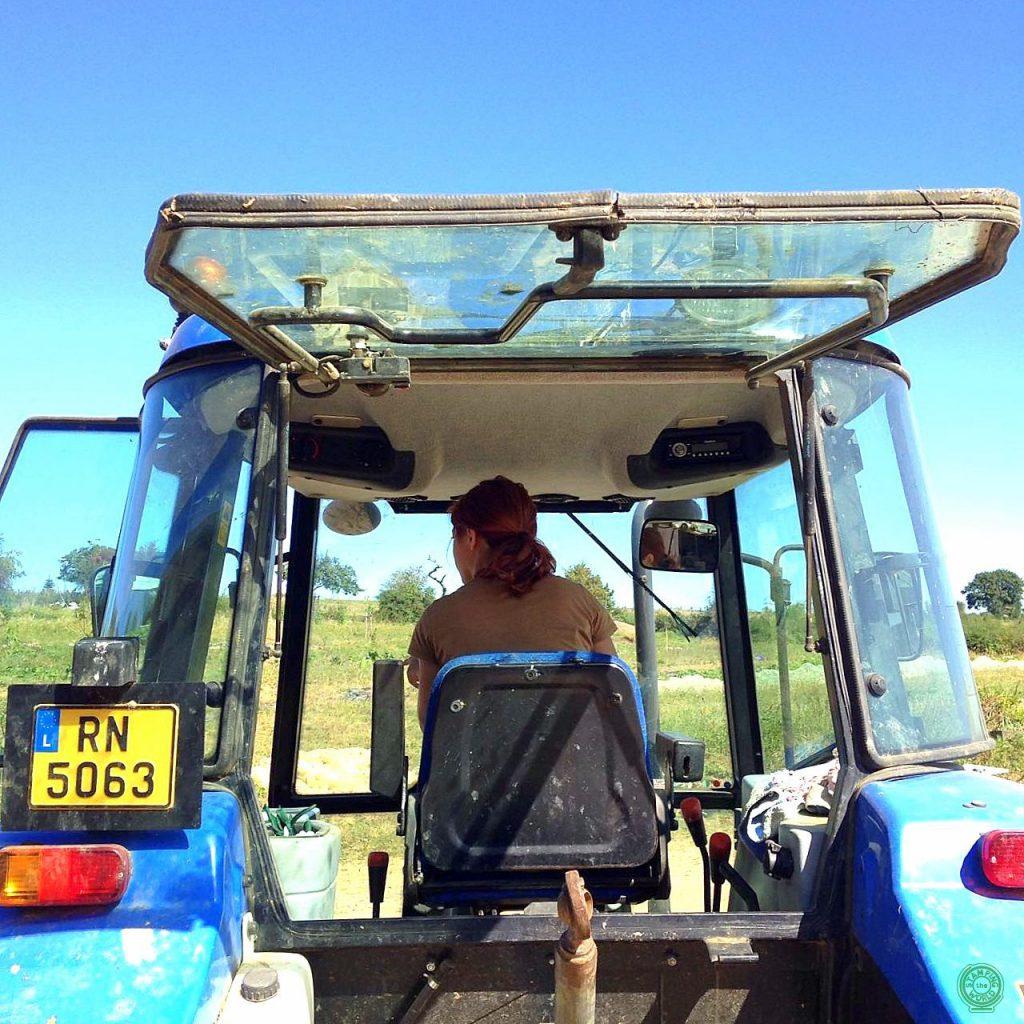 Con Workaway puoi ritrovarti anche a... guidare un trattore!