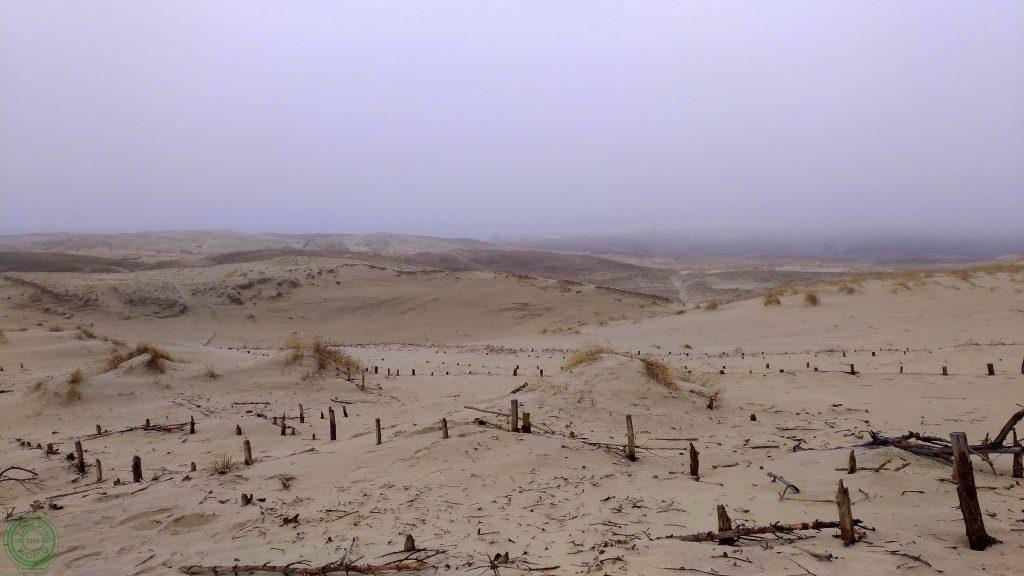 La penisola curlandese - Duna di Parnadis