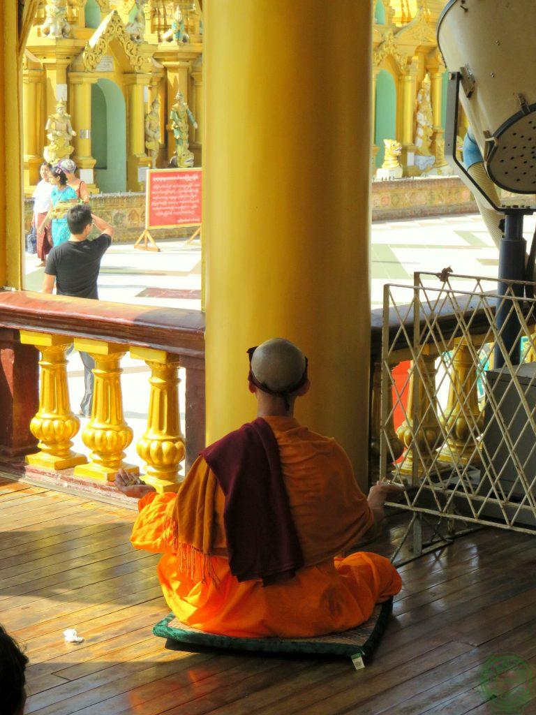 shock culturale - 1 fase monaco