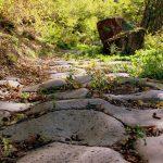 Lazio Insolito: un giorno sulla Via Amerina