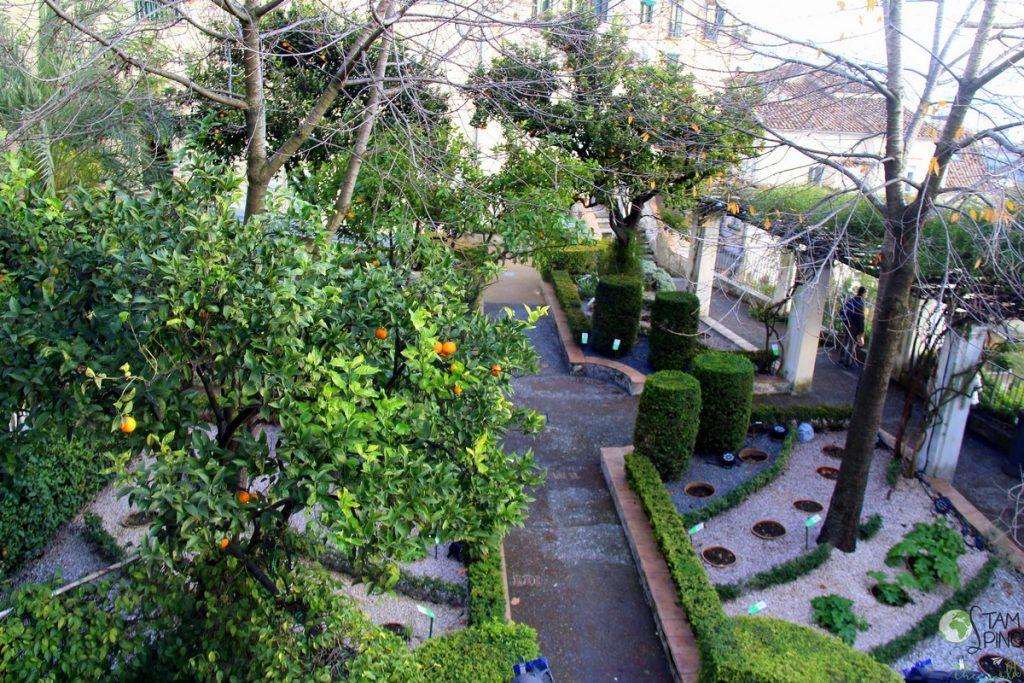 Il giardino della minerva a salerno il primo orto - Ingresso giardino ...