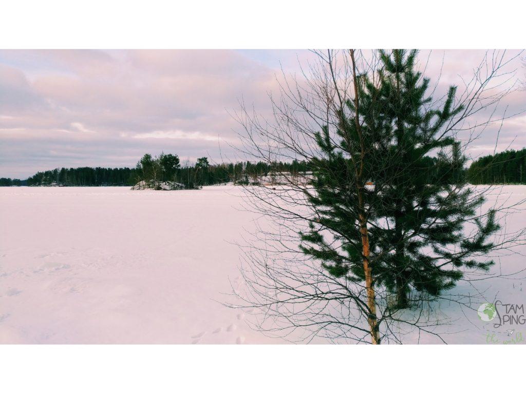 Sauna Finlandese - Lago ghiacciato a Savitaipale