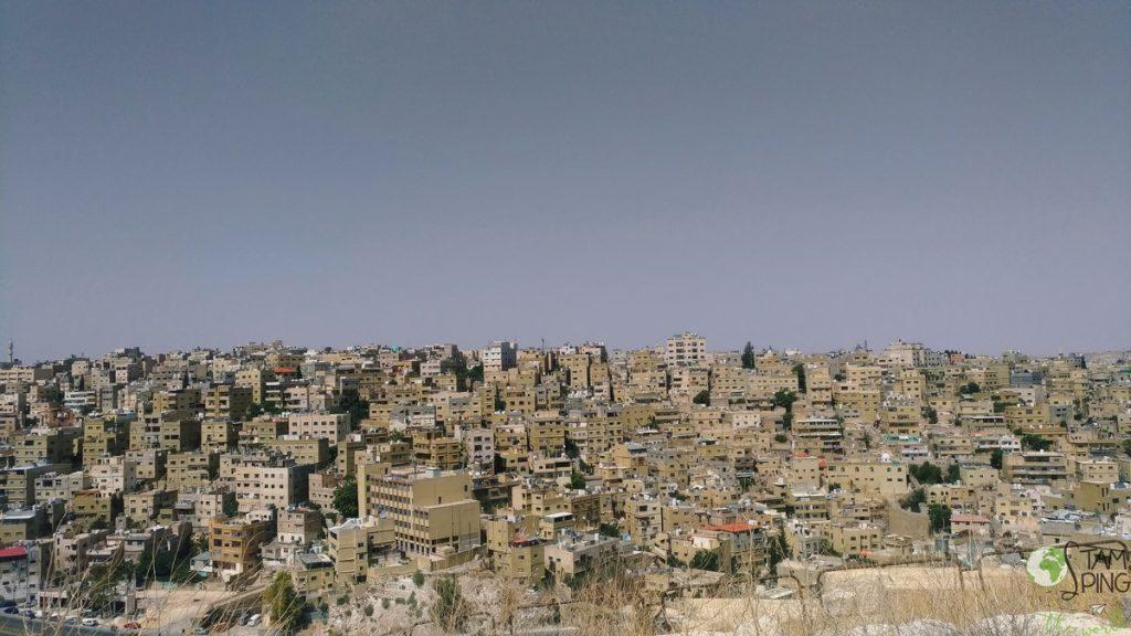 Amman - alveare