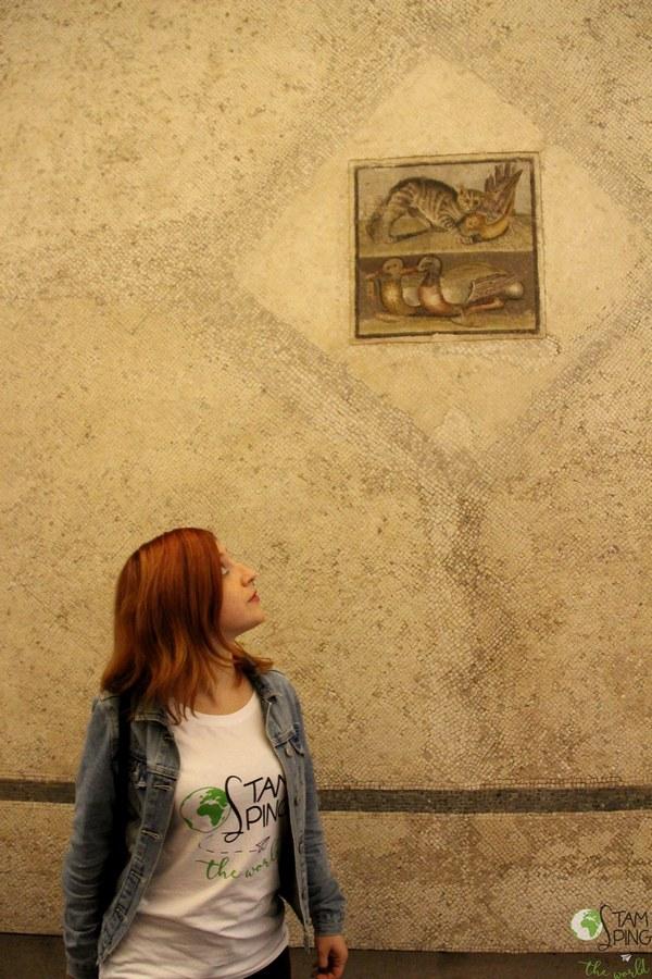Palazzo Massimo alle Terme - Museo Nazionale Romano - mosaico